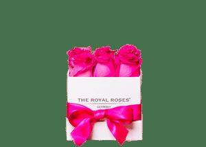 Royal Cube Box weiß small
