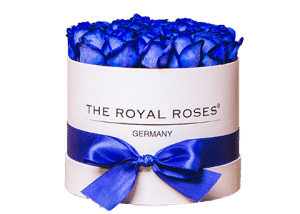 Royal Round Box weiß medium