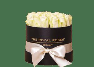 Royal Cube Box schwarz small
