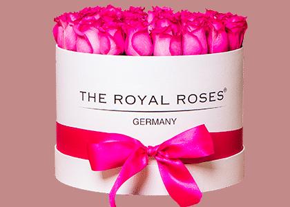 Royal Round Box weiß