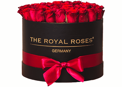 Royal Round Box schwarz big