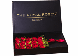 Royal Delux Box in schwarz