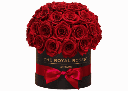 Royal Bonbon Box schwarz rot