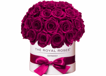 Royal Bonbon Box weiß magenta