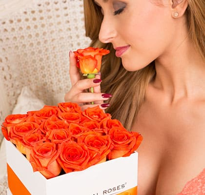 The Royal Roses® Die orangenen Rosen