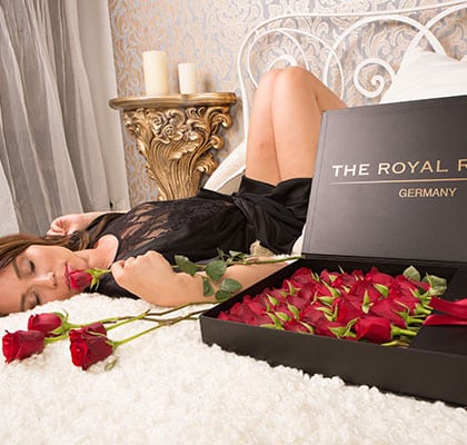 The Royal Roses® Die roten Rosen
